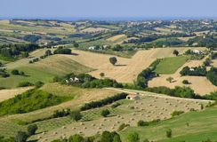 Summer landscape in Marches near Barchi Stock Images