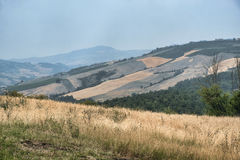 Oltrepo Pavese Italy, rural landscape at summer Stock Photos