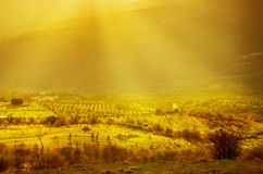 Rural landscape with sun rays Royalty Free Stock Photo