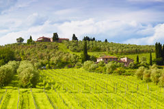Rural landscape on a Sunny summer day, Tuscany Stock Photos