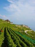 Rural landscape in Switzerland Royalty Free Stock Photos