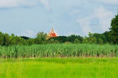 Rural landscape with temple in Thailand Stock Photos