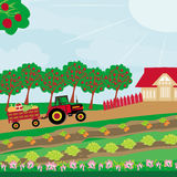 Rural landscape -  tractor and orchard Royalty Free Stock Photos