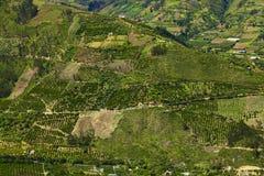 Rural Landscape in Tungurahua Province, Ecuador Stock Image