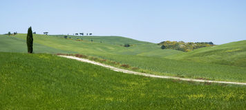 Rural landscape in Tuscany Royalty Free Stock Images