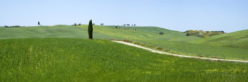 Rural landscape in Tuscany Stock Photography