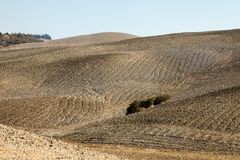 The rural landscape of the  Tuscany. Italy Stock Photo
