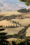 The rural landscape of the  Tuscany. Italy Royalty Free Stock Photos