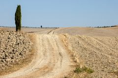 The rural landscape of the  Tuscany. Royalty Free Stock Images