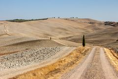 The rural landscape of the  Tuscany. Italy Royalty Free Stock Image