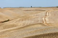 The rural landscape of the  Tuscany. Italy Royalty Free Stock Photography