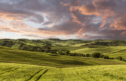 Rural landscape, Tuscany, Italy Stock Photography