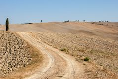 The rural landscape of the  Tuscany. Italy Royalty Free Stock Images