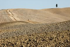 The rural landscape of the  Tuscany. Italy Stock Photography