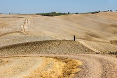 The rural landscape of the  Tuscany. Italy Stock Photos