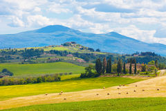 Rural landscape of Tuscany. Typical summer rural landscape of Tuscany, Italy Stock Photo