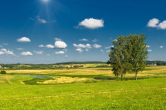 Rural landscape with two trees Stock Photos