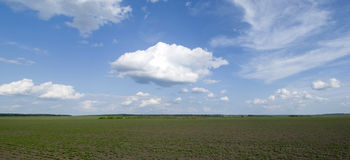 Rural landscape in Ukraine Royalty Free Stock Image