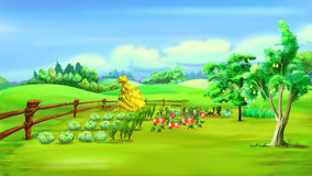 Rural Landscape with Vegetable Garden in a Summer Day. Digital Painting Background, Illustration in cartoon style character Stock Photography