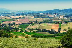 Rural landscape. View of Tuscany fields in summer, Italy. Rural landscape Stock Photos