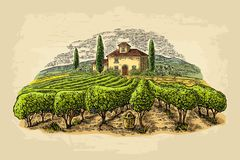Rural landscape with villa, vineyard fields and hills. Vector engraving. Rural landscape with villa, vineyard fields and hills. Vector color vintage engraving on Stock Image