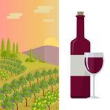 Rural Landscape with Vineyard Stock Image