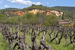 Rural landscape with vineyard and ochre quarries,  Royalty Free Stock Photo