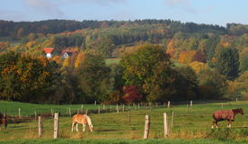 Rural Landscape in Westphalia, Germany Royalty Free Stock Photography