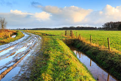 Rural landscape with wet road and grassland Stock Photography