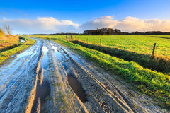 Rural landscape with wet road and grassland Royalty Free Stock Images