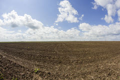 Rural landscape with white and grey clouds, soil and grass texture Royalty Free Stock Image