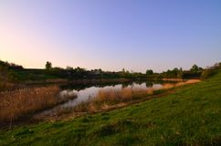A rural landscape with a wild reed field and a small lake. Ecologically clean place for res Stock Photo