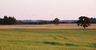 Rural landscape with wind turbines Royalty Free Stock Photos