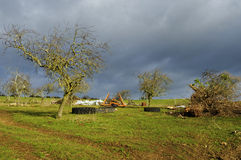 Rural landscape in winter Stock Images