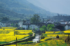 Rural landscape in wuyuan county Stock Photo