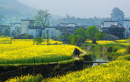 Rural landscape in wuyuan county Royalty Free Stock Photos