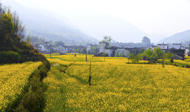 Rural landscape in Wuyuan, Jiangxi Province, China. Stock Image