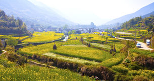Rural landscape in Wuyuan, Jiangxi Province, China. Royalty Free Stock Image