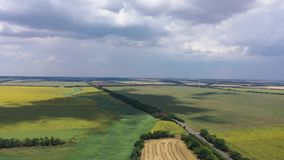 Rural landscape. You can see an aerial view of fields of wheat and sunflowers stock footage