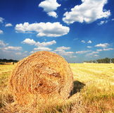 Rural landscapes. Hays in the field Stock Image