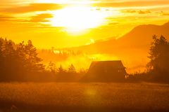 Rural landscapes. In the morning Royalty Free Stock Photos