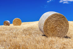 Rural landscapes of Tuscany, Italy. Bales and haystacks on the hills and fields. Rural landscapes of Tuscany, Italy, Europe. Round bales of hay in a field on a stock image
