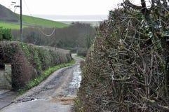 Rural lane going down to the coast. Rural lane going down hill to the coast Royalty Free Stock Photo