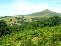 Rural lanscape. Deep in the black mountains in South Wales Royalty Free Stock Photos