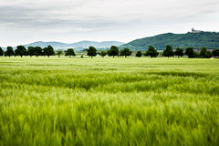 Rural lansdscape Royalty Free Stock Images