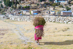 Rural life on Island of the Sun, Titicaca Lake, Bolivia Royalty Free Stock Images