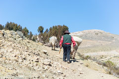 Rural life on Island of the Sun, Titicaca Lake, Bolivia Royalty Free Stock Photography