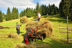 Rural life in Romania Royalty Free Stock Photos