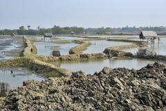 Rural life at west bengal