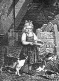 Rural lifestyle, girl feeding cat and kittens, vintage engraving. Portrait of peasant girl feeding with milk cat and kittens in the granary, vintage engraving Stock Photos